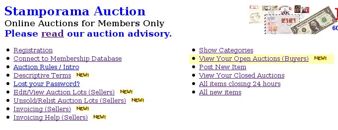 View Your Open Auctions
